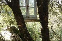 fenêtre-perchée