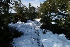 sous-la-neige